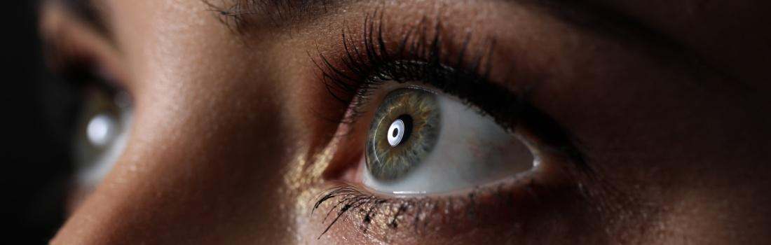 Formation Brain Gym Cercles de vision (BG 4) - Edu-kinésiologie